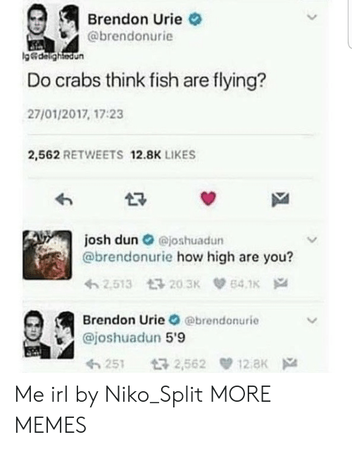 how high: Brendon Urie  @brendonurie  g&dalightedun  Do crabs think fish are flying?  27/01/2017, 17:23  2,562 RETWEETS 12.8K LIKES  josh dun@joshuadun  @brendonurie how high are you?  2.513 203K  64.1K  Brendon Urie @brendonurie  @joshuadun 5'9  12 aK  t32,562  251 Me irl by Niko_Split MORE MEMES
