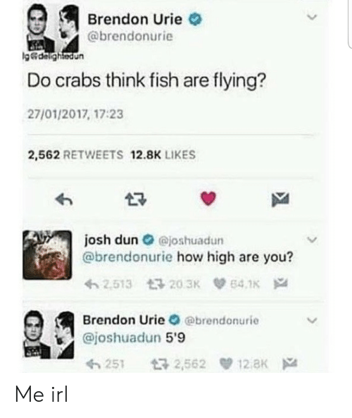 how high: Brendon Urie  @brendonurie  g&dalightedun  Do crabs think fish are flying?  27/01/2017, 17:23  2,562 RETWEETS 12.8K LIKES  josh dun@joshuadun  @brendonurie how high are you?  2.513 203K  64.1K  Brendon Urie @brendonurie  @joshuadun 5'9  12 aK  t32,562  251 Me irl