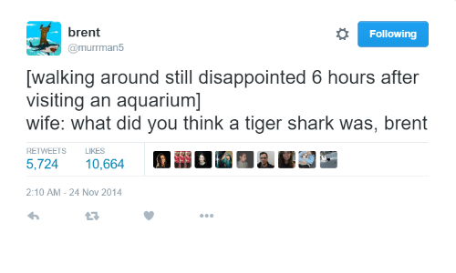Disappointed: brent  @murrman5  Following  walking around still disappointed 6 hours after  visiting an aquarium]  wife: what did you think a tiger shark was, brent  RETWEETS  LIKES  5,72410,664  2:10 AM-24 Nov 2014  23