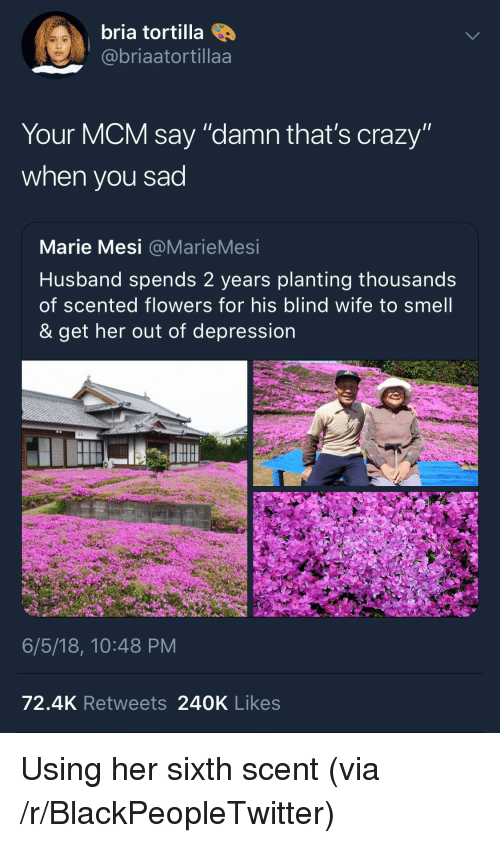 "mcm: bria tortilla  @@briaatortillaa  Your MCM say ""damn that's crazy""  when you sad  Marie Mesi @MarieMesi  Husband spends 2 years planting thousands  of scented flowers for his blind wife to smell  & get her out of depression  6/5/18, 10:48 PM  72.4K Retweets 240K Likes <p>Using her sixth scent (via /r/BlackPeopleTwitter)</p>"