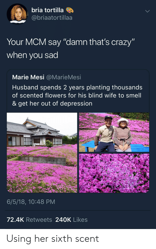 "mcm: bria tortilla  @@briaatortillaa  Your MCM say ""damn that's crazy""  when you sad  Marie Mesi @MarieMesi  Husband spends 2 years planting thousands  of scented flowers for his blind wife to smell  & get her out of depression  6/5/18, 10:48 PM  72.4K Retweets 240K Likes Using her sixth scent"