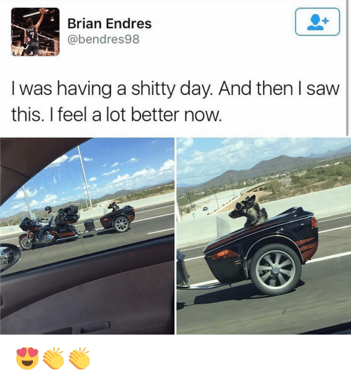 Memes, 🤖, and Brian: Brian Endres  NC  @bendres 98  was having a shitty day And then I saw  this. feel a lot better now 😍👏👏