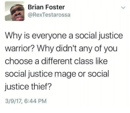 Persimmon: Brian Foster  @RexTestarossa  Why is everyone a social justice  warrior? Why didn't any of you  choose a different class like  social justice mage or social  justice thief?  3/9/17, 6:44 PM