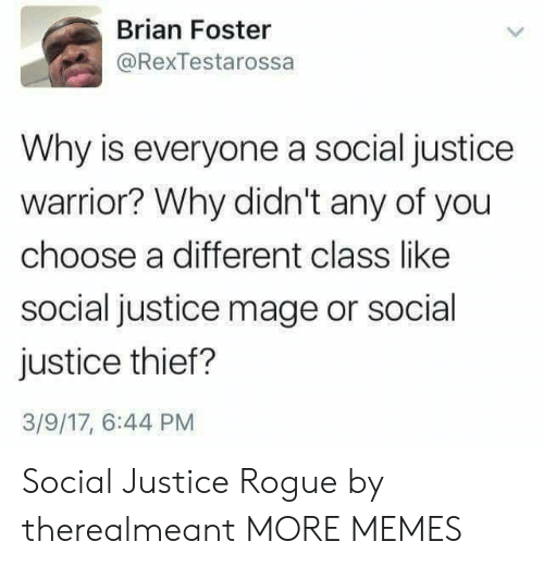 Rogue: Brian Foster  @RexTestarossa  Why is everyone a social justice  warrior? Why didn't any of you  choose a different class like  social justice mage or social  justice thief?  3/9/17, 6:44 PM Social Justice Rogue by therealmeant MORE MEMES