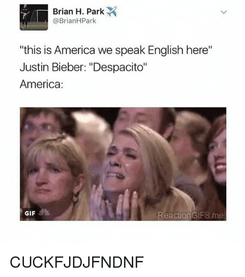 "reaction gifs: Brian H. Park  @Brian HPark  ""this is America we speak English here""  Justin Bieber: ""Despacito""  America  GIF  Reaction GIFS me CUCKFJDJFNDNF"