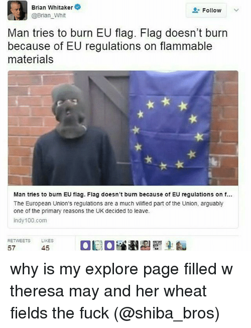 Whitnesses: Brian Whitaker  Follow  @Brian Whit  Man tries to burn EU flag. Flag doesn't burn  because of EU regulations on flammable  materials  Man tries to burn EU flag. Flag doesn't burn because of EU regulations on f...  The European Union's regulations are a much vilified part of the Union, arguably  one of the primary reasons the UK decided to leave.  indy 100 com  RETWEETS LIKES  at a  45  57 why is my explore page filled w theresa may and her wheat fields the fuck (@shiba_bros)