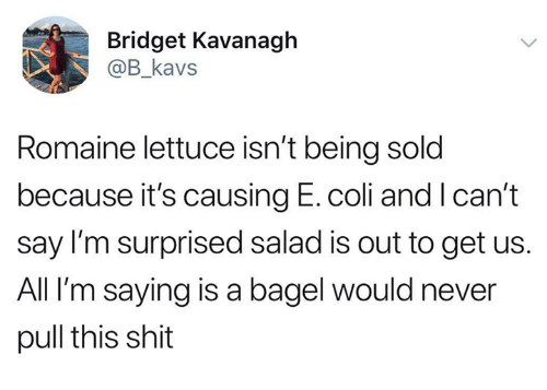 Dank, Shit, and Never: Bridget Kavanagh  @B_kavs  Romaine lettuce isn't being sold  because it's causing E. coli and I can't  say I'm surprised salad is out to get us.  All I'm saying is a bagel would never  pull this shit