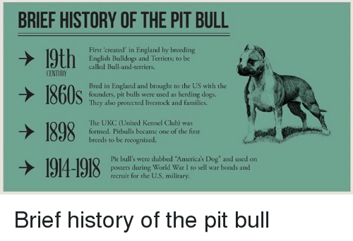 cause and effect pit bulls The effects of dogfighting are widespread and go beyond brutality to animals because of the perceived menace of pit bulls -- which, when raised properly.