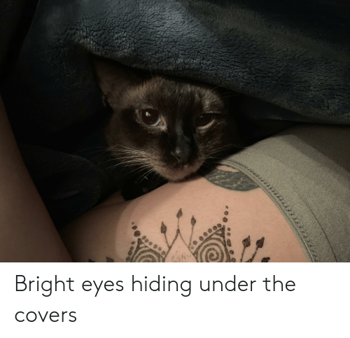 bright eyes: Bright eyes hiding under the covers