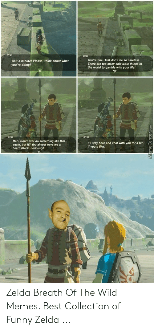 Funny Zelda: Brigo  You're fine. Just don't be so careless.  There are too many enjoyable things in  the world to gamble with your life!  Wait a minute! Please, think about what  you're doing!  Man! Don't ever do something like that  again, got it? You almost gave me a  heart attack. Seriously!  I'll stay here and chat with yuo a it,  if you'd like. Zelda Breath Of The Wild Memes. Best Collection of Funny Zelda ...