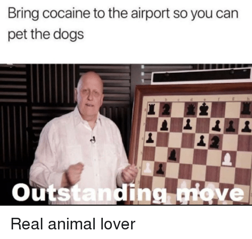 animal lover: Bring cocaine to the airport so you can  pet the dogs  Outs  in  ve Real animal lover