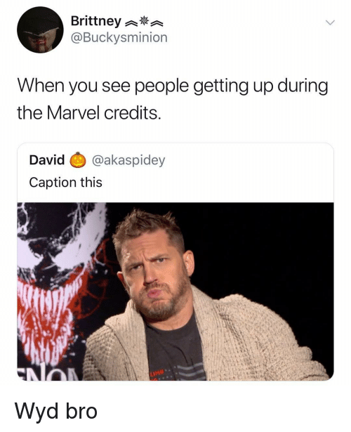 Wyd, Marvel, and Dank Memes: Brittney  @Buckysminion  When you see people getting up during  the Marvel credits  David @akaspidey  Caption this  LIMG Wyd bro