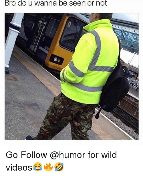 Videos, Wild, and Trendy: Bro do u wanna be seen or not Go Follow @humor for wild videos😂🔥🤣