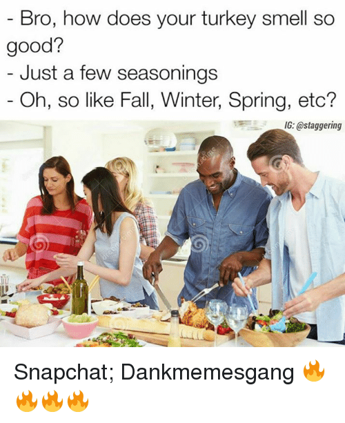 Doe, Fall, and Memes: Bro, how does your turkey smell so  good?  Just a few seasonings  Oh, so like Fall, Winter, Spring, etc?  IG: @staggering Snapchat;    Dankmemesgang 🔥🔥🔥🔥
