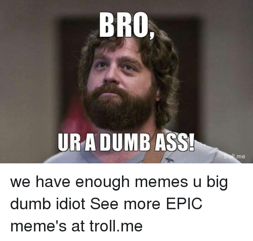 Ass, Dumb, and Meme: BRO  URA DUMB ASS! we have enough memes  u big dumb idiot  See more EPIC meme's at troll.me