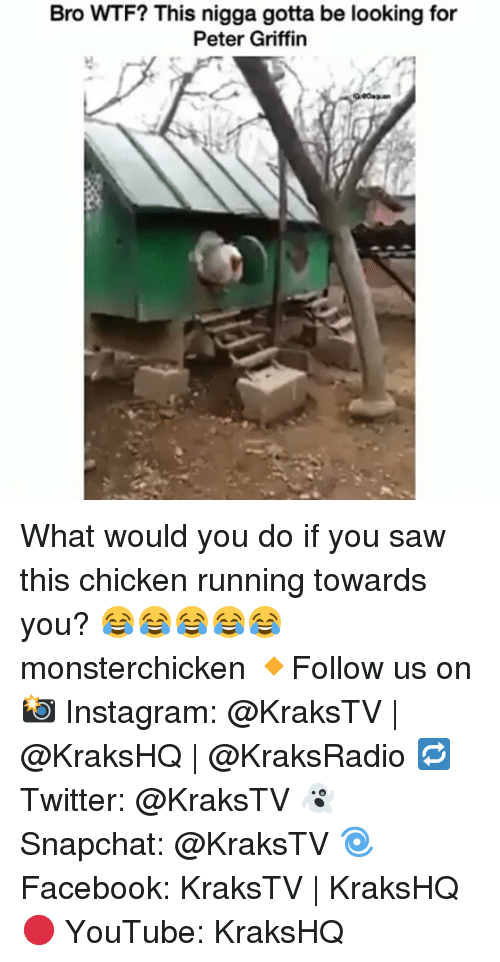 Memes, 🤖, and Griffin: Bro WTF? This nigga gotta be looking for  Peter Griffin What would you do if you saw this chicken running towards you? 😂😂😂😂😂 monsterchicken 🔸Follow us on 📸 Instagram: @KraksTV | @KraksHQ | @KraksRadio 🔁 Twitter: @KraksTV 👻 Snapchat: @KraksTV 🌀Facebook: KraksTV | KraksHQ 🔴 YouTube: KraksHQ