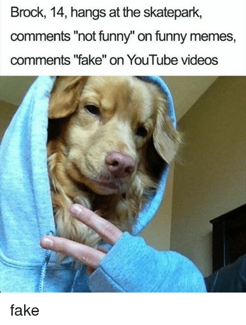 "Fake, Funny, and Memes: Brock, 14, hangs at the skatepark,  comments ""not funny"" on funny memes,  comments '""fake"" on YouTube videos fake"