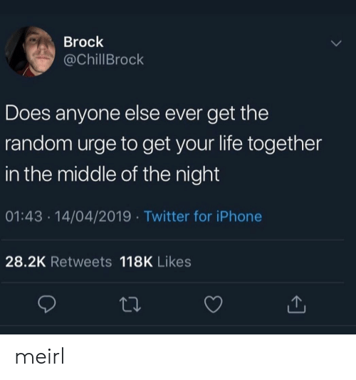 Brock: Brock  @ChillBrock  Does anyone else ever get the  random urge to get your life together  in the middle of the night  01:43 14/04/2019 Twitter for iPhone  28.2K Retweets 118K Likes meirl