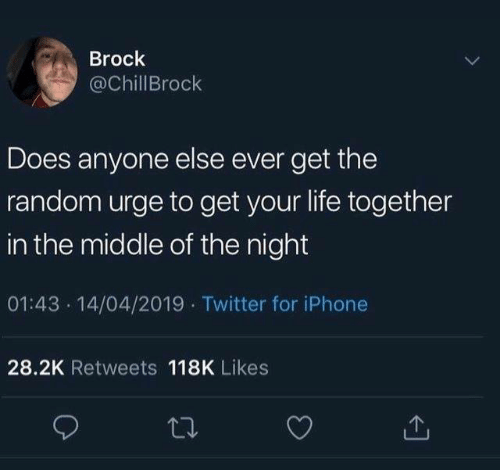Brock: Brock  @ChillBrock  Does anyone else ever get the  random urge to get your life together  in the middle of the night  01:43 14/04/2019 Twitter for iPhone  28.2K Retweets 118K Likes