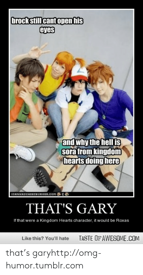 Cant Open: brock still cant open his  eyes  and why the hell is  sora from kingdom  hearts doing here  ICANHASCHEEZBURGER.COM  THAT'S GARY  If that were a Kingdom Hearts character, it would be Roxas  TASTE OF AWESOME.COM  Like this? You'll hate that's garyhttp://omg-humor.tumblr.com