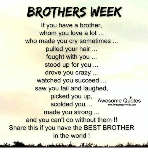 I Have The Best Sister In The World Quotes: 25+ Best Memes About Brothers, Brother, Love, Memes, And