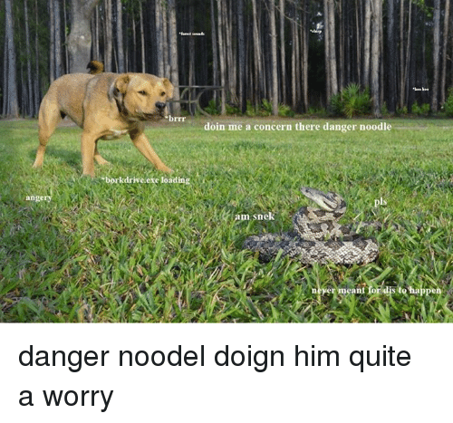 Quite, Dank Memes, and Means: brrr  doin me a concern there danger noodle  borkdriveere loading  ange  from snek  permeant foFdistehappe  yer mean danger noodel doign him quite a worry