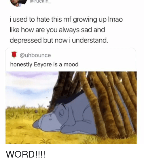 Growing Up, Memes, and Mood: Bruckin  i used to hate this mf growing up Imao  like how are you always sad and  depressed but now i understand.  @uhbounce  honestly Eeyore is a mood WORD!!!!