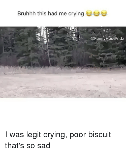 Legitably: Bruhhh this had me crying to  @FunnyHoodVidz I was legit crying, poor biscuit that's so sad
