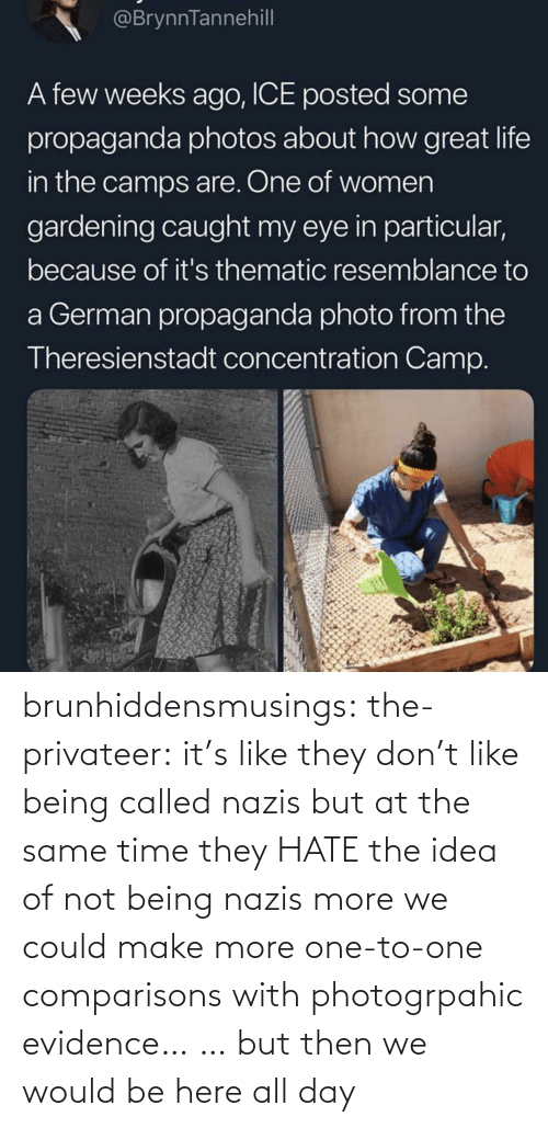 at the same time: brunhiddensmusings:  the-privateer: it's like they don't like being called nazis but at the same time they HATE the idea of not being nazis more we could make more one-to-one comparisons with photogrpahic evidence… … but then we would be here all day