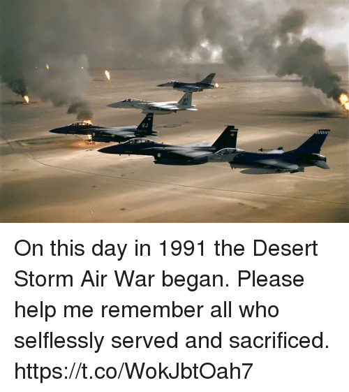 Memes, Help, and 🤖: BT  053 On this day in 1991 the Desert Storm Air War began. Please help me remember all who selflessly served and sacrificed. https://t.co/WokJbtOah7