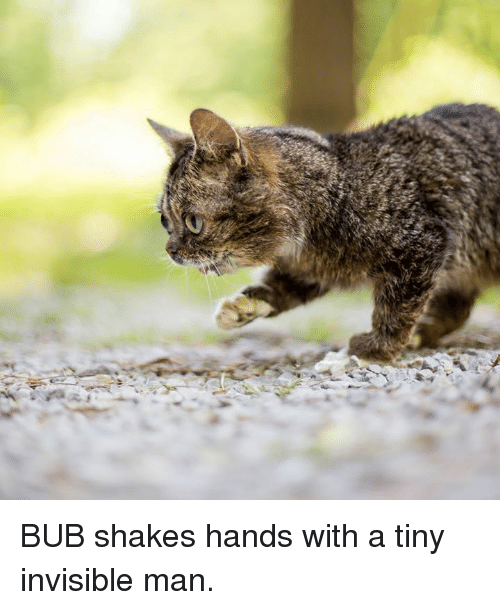 Memes, 🤖, and Tiny: BUB shakes hands with a tiny invisible man.