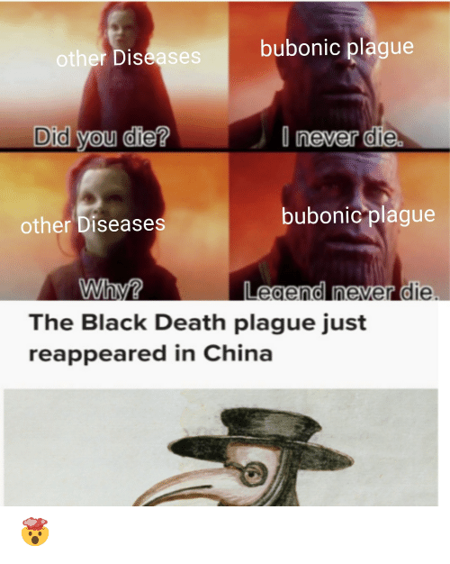 did you die: bubonic plague  other Diseases  I never die.  Did you die?  bubonic plague  other Diseases  Legend never die  Why?  The Black Death plague just  reappeared in China 🤯