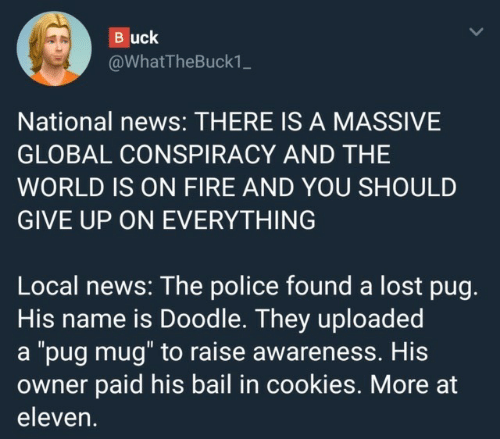 """pug: Buck  @WhatTheBuck1_  National news: THERE IS A MASSIVE  GLOBAL CONSPIRACY AND THE  WORLD IS ON FIRE AND YOU SHOULD  GIVE UP ON EVERYTHING  Local news: The police found a lost pug.  His name is Doodle. They uploaded  a """"pug mug"""" to raise awareness. His  owner paid his bail in cookies. More at  eleven."""