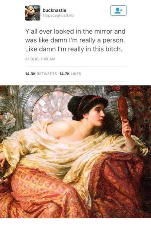 Bitch, Mirror, and Classical Art: bucknastie  @spaceghostkirbo  Y'all ever looked in the mirror and  was like damn l'm really a person.  Like damn l'm really in this bitch.  4/10/16, 1:49 AM  14.3K  RETWEETS  14.7K  LIKES