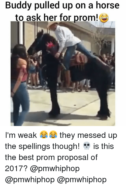 Memes, 🤖, and Ask: Buddy pulled up on a horse  to ask her for prom! I'm weak 😂😂 they messed up the spellings though! 💀 is this the best prom proposal of 2017? @pmwhiphop @pmwhiphop @pmwhiphop