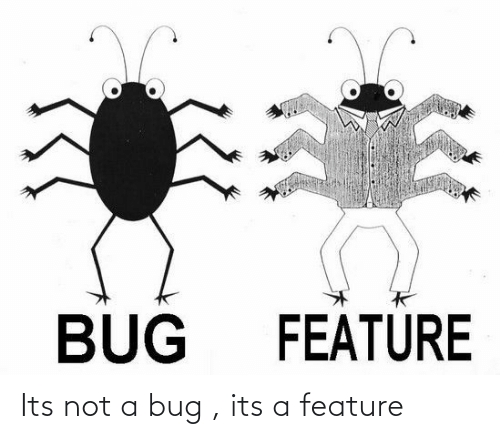 bug: BUG  FEATURE Its not a bug , its a feature