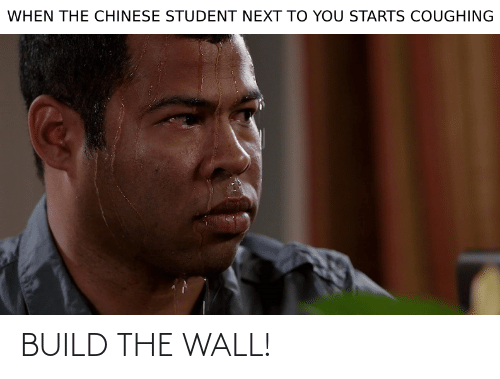 build-the-wall: BUILD THE WALL!