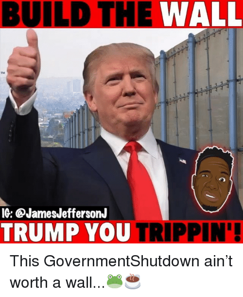 build-the-wall: BUILD THE WALL  TM  IG: @JamesJeffersonJ  TRUMP YOU TRIPPIN' This GovernmentShutdown ain't worth a wall...🐸☕️