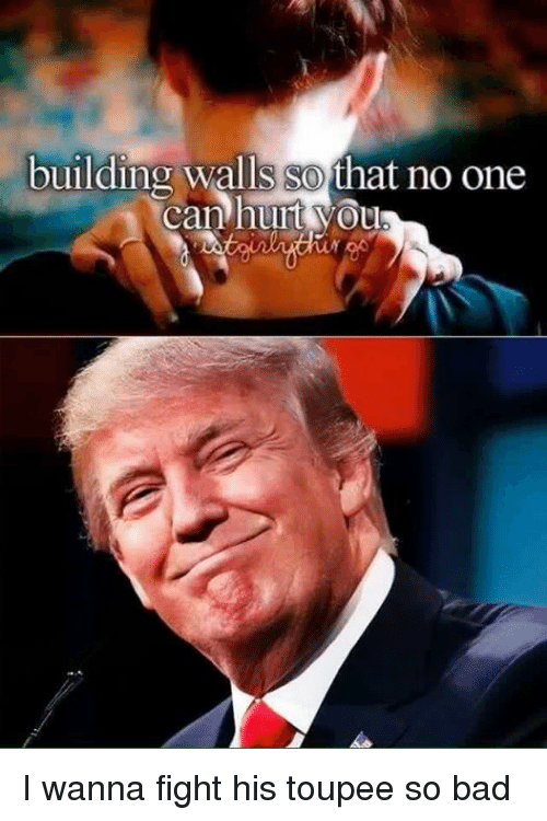 toupee: building walls SO  that no one  Canhuut vou I wanna fight his toupee so bad
