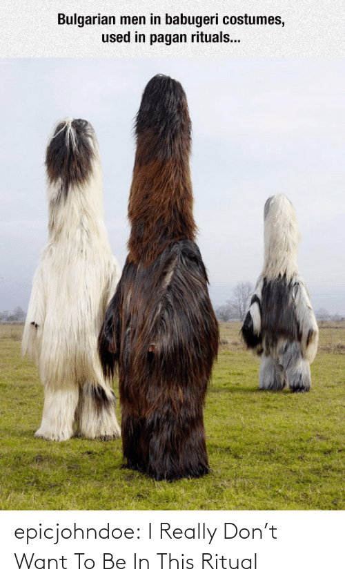 pagan: Bulgarian men in babugeri costumes,  used in pagan rituals... epicjohndoe:  I Really Don't Want To Be In This Ritual