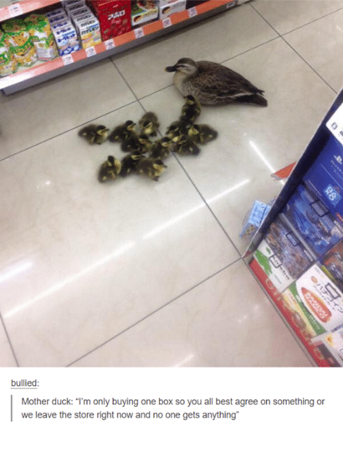 """Motheres: bullied  Mother duck: """"I'm only buying one box so you all best agree on something or  we leave the store right now and no one gets anything"""""""