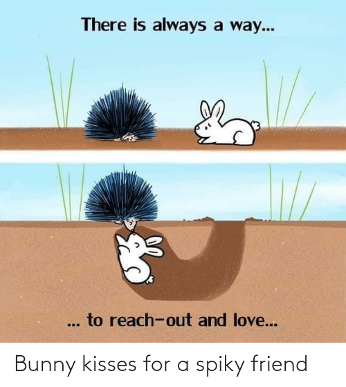 kisses: Bunny kisses for a spiky friend