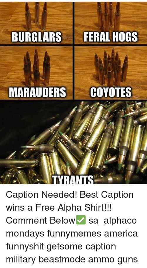 Memes, 🤖, and Alphas: BURGLARS  FERAL HOGS  MARAUDER  COYOTES  TYRANTS Caption Needed! Best Caption wins a Free Alpha Shirt!!! Comment Below✅ sa_alphaco mondays funnymemes america funnyshit getsome caption military beastmode ammo guns