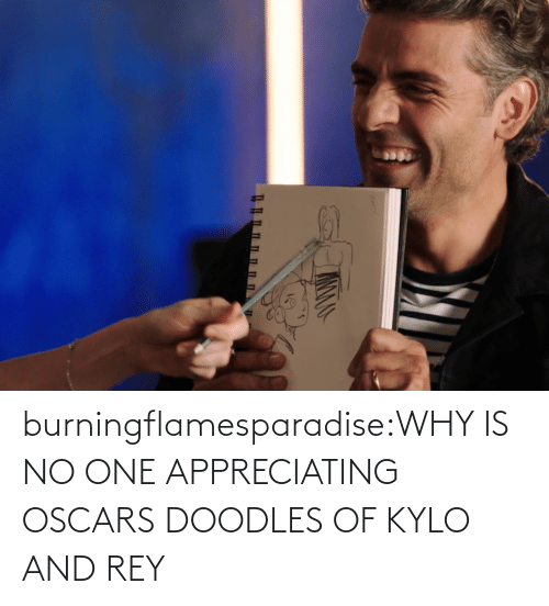 Oscars: burningflamesparadise:WHY IS NO ONE APPRECIATING OSCARS DOODLES OF KYLO AND REY