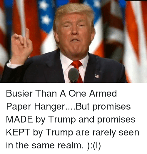 busier than a one armed paper hanger but promises made by 7069340 busier than a one armed paper hangerbut promises made by trump and,Busier Than A Meme