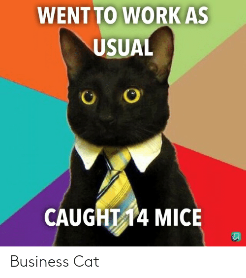 Business: Business Cat