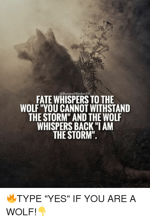 """Withstanded: BusinessMindset101  FATE WHISPERS TO THE  WOLF """"YOU CANNOT WITHSTAND  THE STORM"""" AND THE WOLF  WHISPERSBACK """"I AM  THE STORM"""" 🔥TYPE """"YES"""" IF YOU ARE A WOLF!👇"""