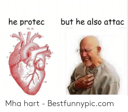 Bestfunnypic: but he also attac  he protec Mha hart - Bestfunnypic.com