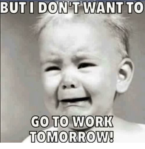 Dont Want To Go To Work: BUT I DONT WANT TO  GO TO WORK  TOMORROW!
