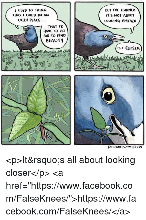 "Facebook, Ugly, and facebook.com: BUT IVE LEARNED  IT'S NOT ABOUT  LOOKING FURTHER  USED TO THINK  THAT I LIVED IN AN  UGLY PLACE  ...THAT IC  HAVE TO GO  FAR TO FIND  BEAUTY  BUT CLOSER  fALSEKNEES MO2o18 <p>It's all about looking closer</p>  <a href=""https://www.facebook.com/FalseKnees/"">https://www.facebook.com/FalseKnees/</a>"